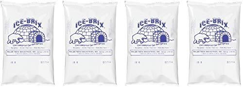 Ice Bucket Tech (Polar Tech IB6 Ice Brix Leakproof Viscous Gel Refrigerant Poly Pack, 4