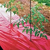 Red Mulch - Garden - Plastic Film - 4ft. X 50ft. 1.0 Mil Embossed By Grower's Solution