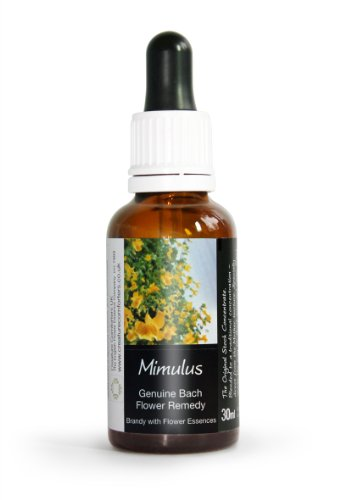 Mimulus Bach Flower Remedy Large 30ml. Genuine Traditionally Made Essence