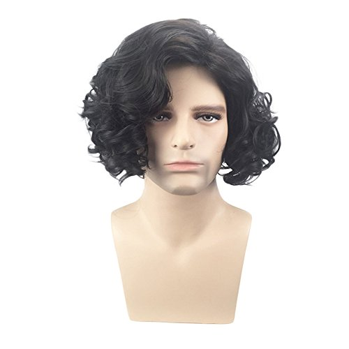 Brown Curly Short Costume Wig (BERON Men's Short Curly Fluffy Costume Cosplay Halloween Wig Black)