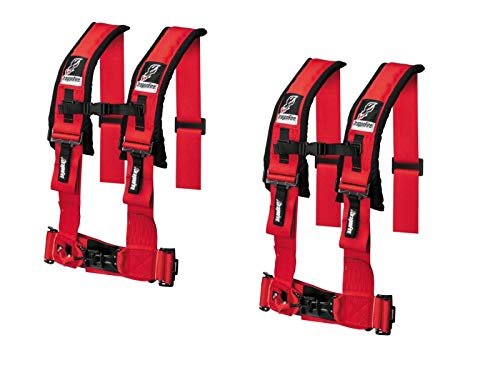 4-Point Harness 3