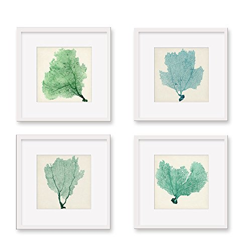 Modern Art Set of 4 Sea Fan Art Prints Framed Canvas Wall Art, White and Green Wall Decoration