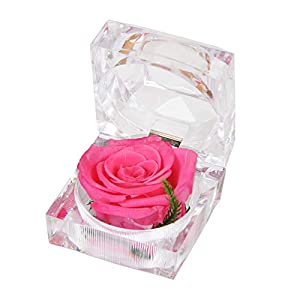 Preserved Fresh Flower Eternal Rose with Acrylic Crystal Ring Box, Gifts for Women, Her, Girls, Mother's Day, Valentine's Day, Christmas,Thanksgiving Day, Anniversary, Birthday, Wedding (Pink)