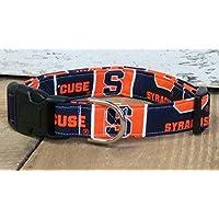 Syracuse University Orangeman dog collar buckle or martingale with leash set option