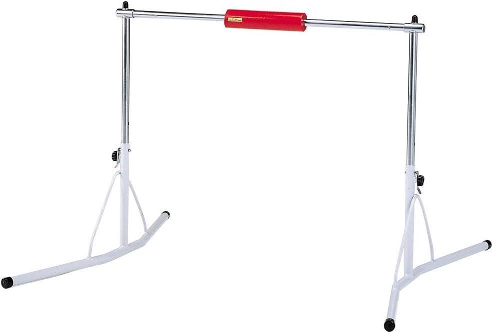 ダンノ(DANNO) 移動式鉄棒 (鉄棒サポートHDX付) D246 SPOSPO