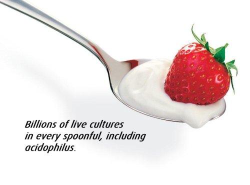 Easiyo Sweet Mango Yogurt Base and Culture, 8-Ounce by EasiYo (Image #3)