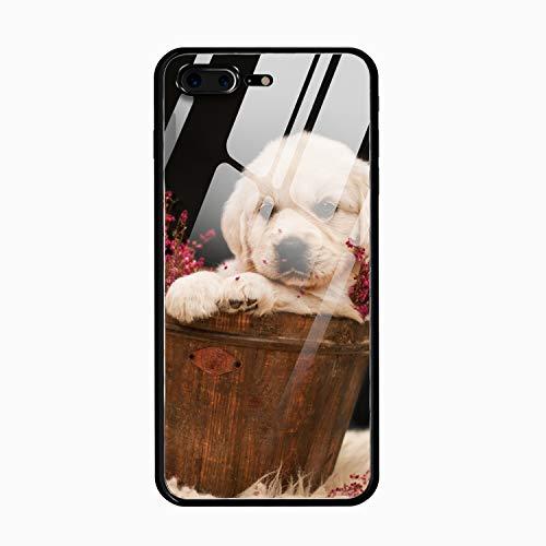 Golden Retriever Puppy Printed Phone 7 Plus/8 Plus Cover Anti-Fingerprint Tempered Glass Compatible for iPhone 7 Plus/8 Plus Case -