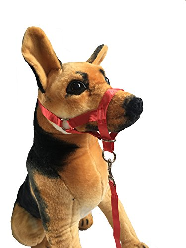 (Charmsong Headcollar Halter Painless Durable Head Collars for Training Red XL)
