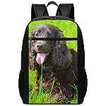 Irish Water Spaniel Multiuses Fation Backpacks School Bookbag Shoulder Bag Casual Daypack Laptop Bag 17 Inch Irish Water Spaniel 4