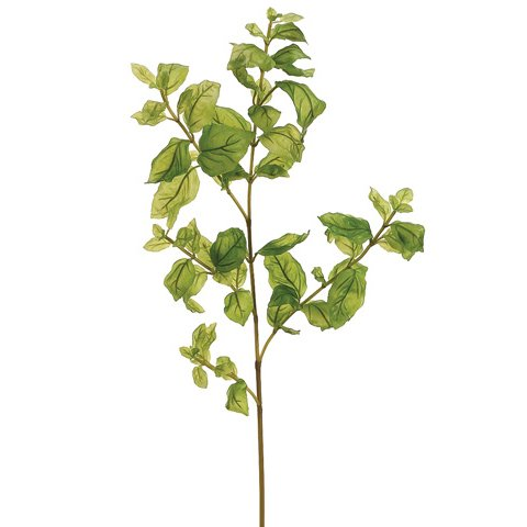 34'' Silk Basil Herb Stem -Green (case of 6)