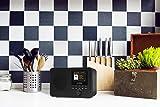 LEMEGA IR1 Portable Internet Radio,FM Digital