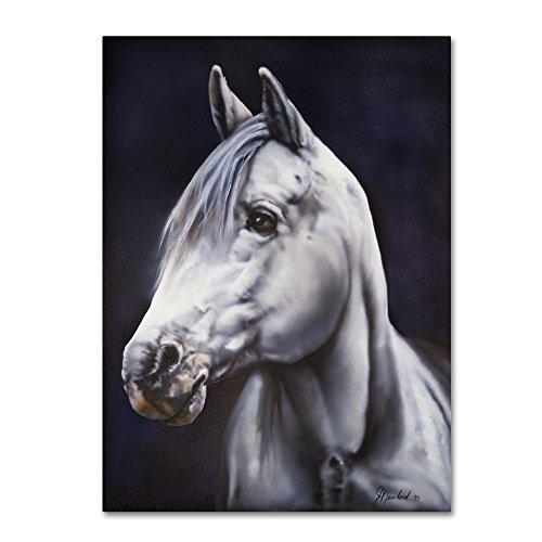 Trademark Fine Art White Arabian Stallion by Jenny Newland, 24x32-Inch Canvas Wall Art by Trademark Fine Art
