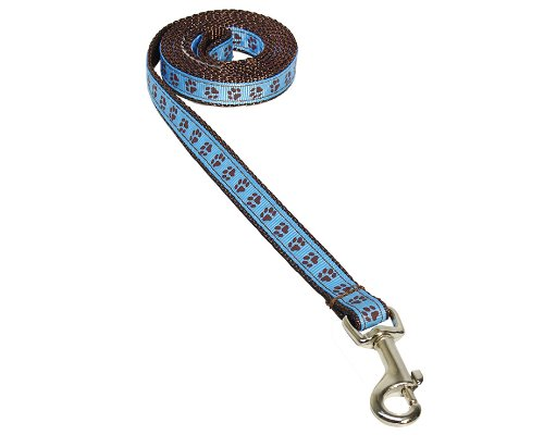 Image of Sassy Dog Wear 4-Feet Blue/Brown Puppy Paws Dog Leash, X-Small