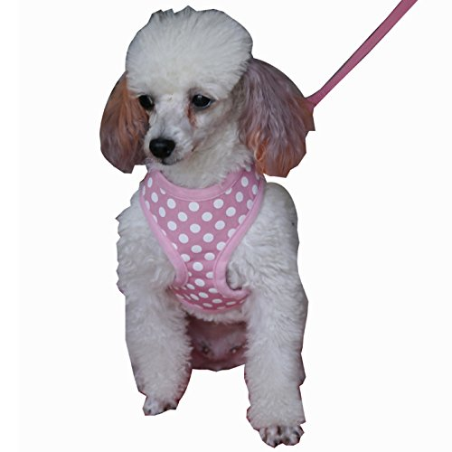 Fashion Shop Pet Dog Harnesses with Cute Antinode Printing Adjustable Extra leash for free (Pink, S 174cm) by Fashion Shop