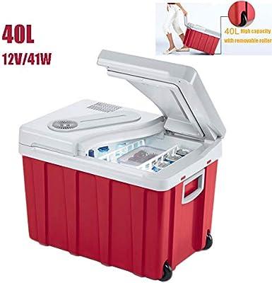 Nevera Termoeléctrica Caja 40L Refrigerador Del Coche 12V Mini ...
