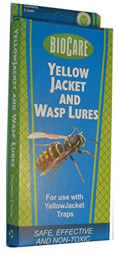 springstar-wasp-yellow-jacket-lure