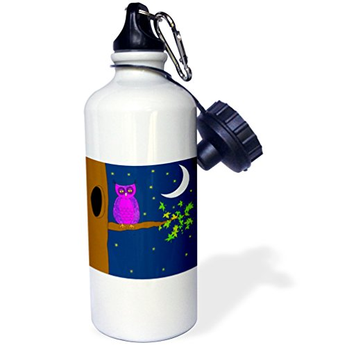 (3dRose Print of Cartoon Owl at Night with Moon-Sports Water Bottle, 21oz (wb_193152_1), Multicolored)
