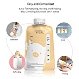 Breast Milk Storage Bags, Convenient Direct-Pump and Save Breastmilk Pouches Pre-Sterilized Self Standing Storage Bag for Breastfeeding with One Pump adapters, BPA Free (20 Counts)