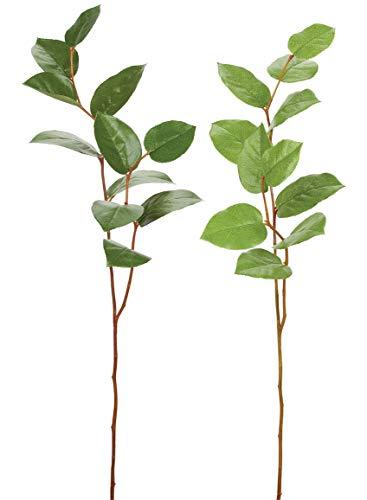 Sullivans 29 Inch Green Salal Leaf Branch - 2 Piece