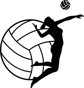 Amazon.com: Girls Volleyball Wall Decal-Volleyball Spike ...