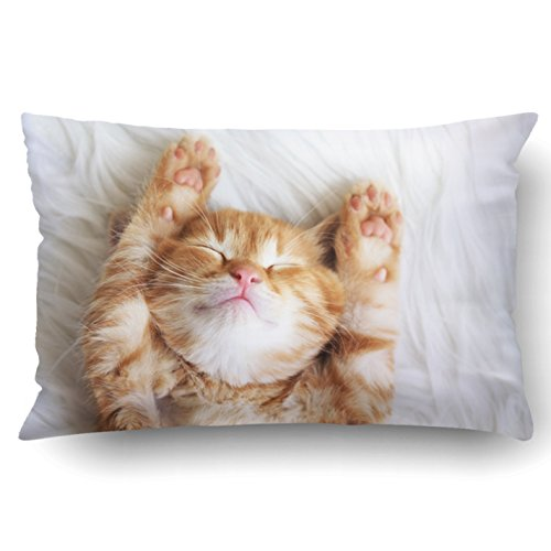 Emvency Queen Throw Waist Pillow Case 20×30 Inches Decorative Cushion Pillowcases Little red Kitten Sleeps on Fur White…
