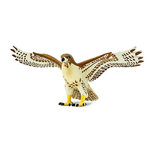 Safari Ltd. Red Tailed Hawk - Realistic Hand Painted Toy Figurine Model - Quality Construction from Phthalate, Lead and BPA Free Materials - For Ages 3 and Up