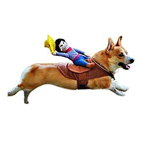 J.C Arts Cowboy Dog Cat Costume Clothes Novelty Funny Pets Party Cosplay Apparel Dog Riders Clothing (M)