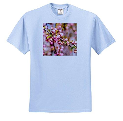 Plum Branch Flower (Alexis Photography - Flowers Sakura - Branch Of Flowering Plum Tree With Flowers - T-Shirts - Adult Light-Blue-T-Shirt 2XL (TS_271526_54))