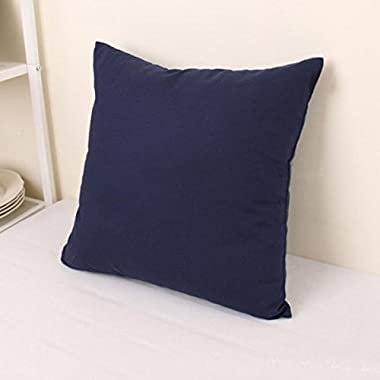 TAOSON Home Decorative Cotton Canvas Square Throw Pillow Cover Cushion Case Solid Pillowcase with Hidden Zipper Closure Multiple Colors (18 x18 (45x45cm),Navy Blue)