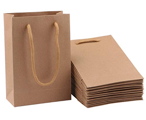 Mini Bag Gift - Gift Bag, Sdootjewelry 50 Pack Kraft Paper Gift Bags with Handles, Heavy Duty Paper Tote Gift Bag Bulk, Brown Matte Craft Bags for Gifts, Party, Weddings and Shopping