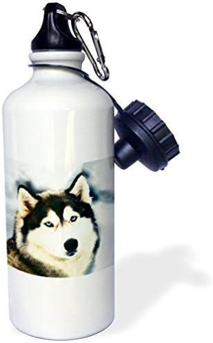 liandun à Husky de Sibérie Sport bouteille d'eau, 21oz, blanc