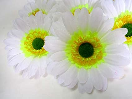 Amazon 12 big silk white gerbera daisy flower heads gerber 12 big silk white gerbera daisy flower heads gerber daisies 35quot mightylinksfo