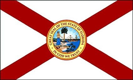 Image result for florida state flag