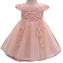 Baby Girl Embroidered 3D Flower Dress Christening Baptism Gowns Girl Tutu Dress
