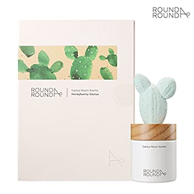 ROUND A'ROUND] Cactus Room Scents 100ml + Refill 80ml / Gypsum Reed Fragrance Diffuser for Fragrant Homes, Rooms, Office, Bathroom, Living Room