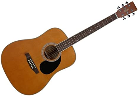 Hudson HD-1 Dreadnought - Guitarra acústica: Amazon.es ...