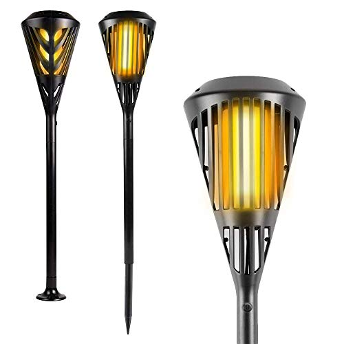 Beautiful Torch Lights!