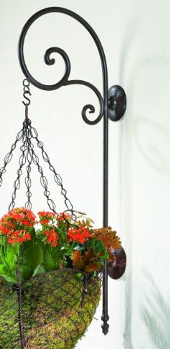 Iron Simple Scroll Hanging Bracket | Wall Mounted Hook Hanger Outdoor by Intelligent Design