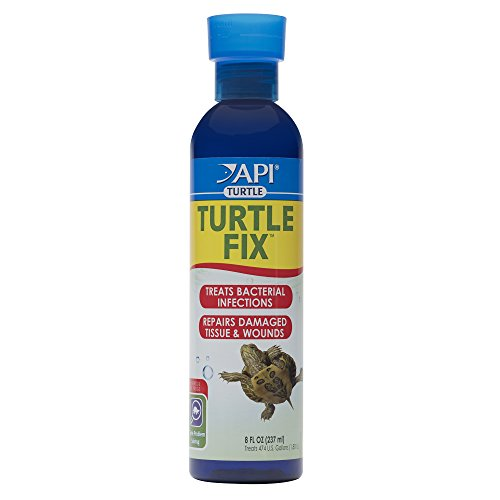 Natural Antibacterial Remedy - API TURTLE FIX Antibacterial Turtle Remedy 8-Ounce Bottle