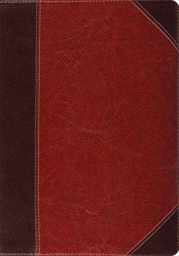 ESV Study Bible (TruTone, Brown/Cordovan, Portfolio Design) (Bible Trutone Esv Design Diamond)