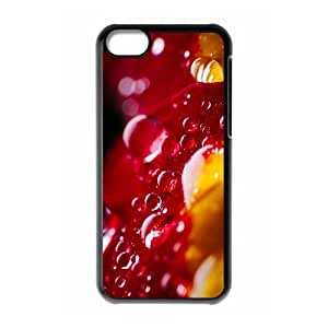 YCHZH Phone case Of Translucent Gradual Color Raindrops 2 Cover Case For Iphone 5C