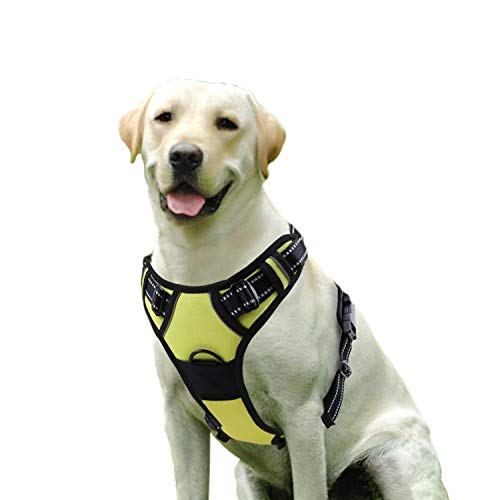 Rabbitgoo  Dog Harness No-Pull Pet Harness Adjustable Outdoor Pet Vest 3M Reflective Oxford Material Vest for Dogs Easy Control for Small Medium Large Dogs (Green, M)