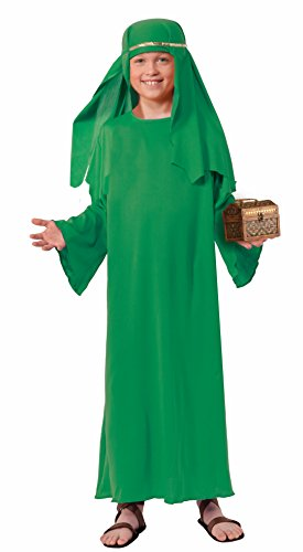 Forum Novelties Biblical Times Shepherd Green Costume Robe, Child Large (Christmas Nativity Costumes)