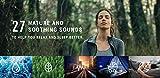 Sangean RCR-30 FM-RBDS/AM/Bluetooth/Aux-in Digital