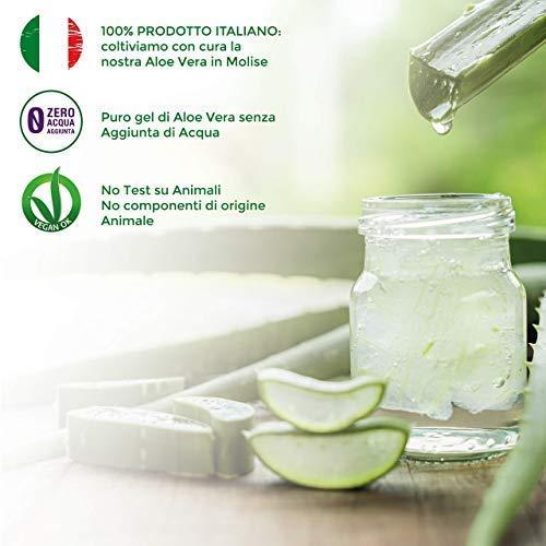 Succo di Aloe Vera e Melograno - 3L 5