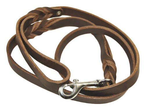 Dean and Tyler Braidy Bunch Dog Leash, Brown 5-Feet by 3/4-Inch Width With Dual Handle And Stainless Steel Snap Hook. by Dean & Tyler