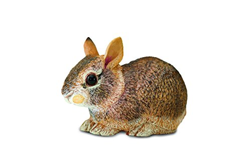 Safari Ltd Incredible Creatures Collection - Eastern Cottontail Rabbit Baby - Realistic and Life-Size - Hand Painted Toy Figurine Model - Quality Construction From Safe and BPA Free Materials - For Ag