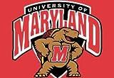 NCAA Maryland Terrapins Indoor/Outdoor Door Mat