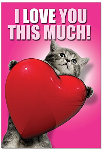 """C1644VDG 'Love You This Much Cat' - Funny Valentine's Day Greeting Card with 5"""" x 7"""" Envelope"""