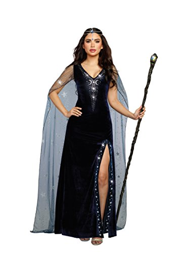 Dreamgirl Women's The Sorceress Dramatic Velvet Costume Gown, Navy Blue, Large]()